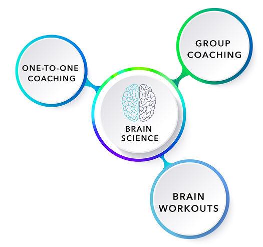 chart-brain-01_edited.jpg