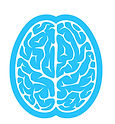 brain-icon.jpg