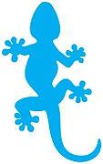 FASTER geco azzurro_page-0001.jpg