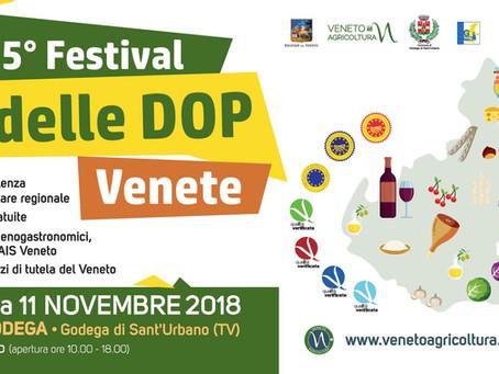 Tutto pronto per il Festival delle DOP Venete