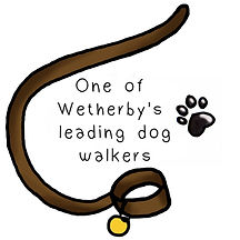 Wetherby's lead-ing dog walkers