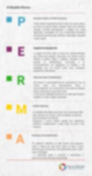 O Modelo Perma (1).jpg