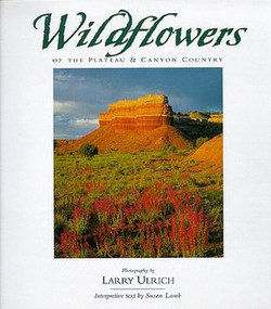 Wildflowers of the plateau & Canyon