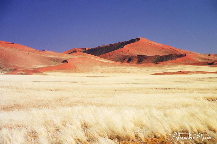 Sossuslvei - Namibie