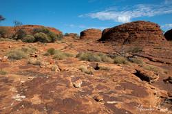 Kings Canyon - Australie