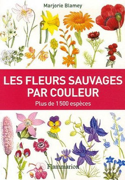 Les fleurs sauvages par couleurs