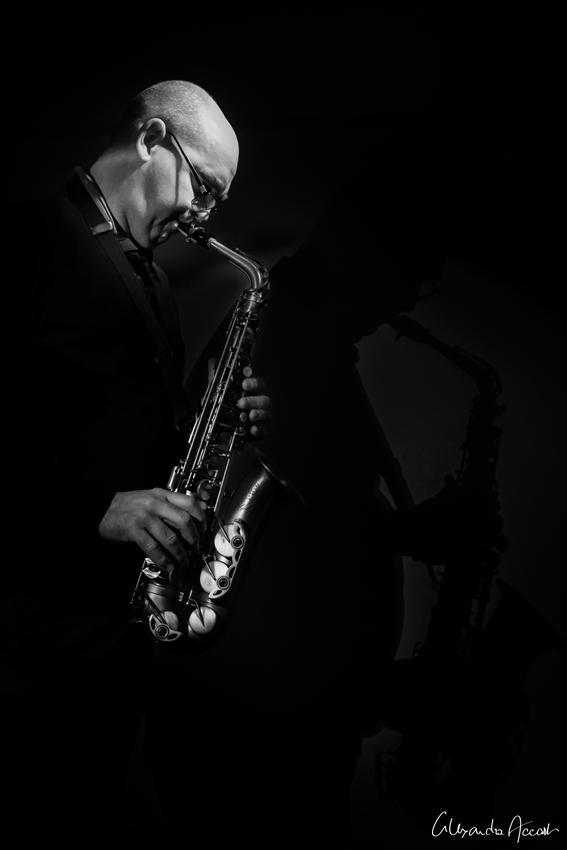 Jazzic instinct
