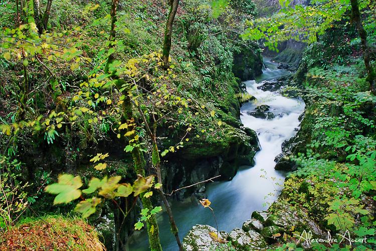 Cascade 3.jpg