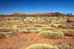 Gosse Bluff - Australie