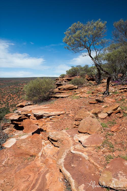 Kalbarri - Australie