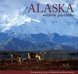 Alaska Wildlife Portfolio