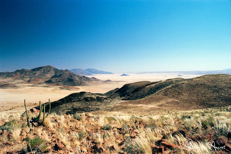 Désert du Namib - Namibie