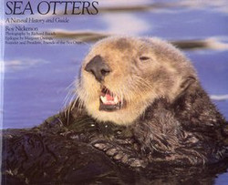 Sea otter - Natural history & guide