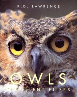 Owls - The silent fliers