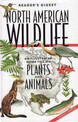 Northern American Wildlife Plants...