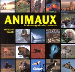 Animaux - La vie sauvage