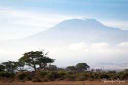 Kilimandjaro - Kenya