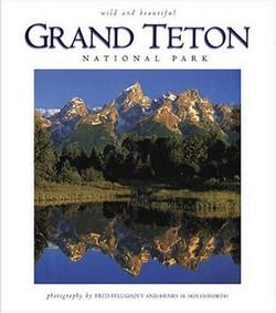 Wild & Beautiful Grand Teton
