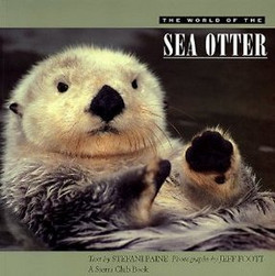 The world of the sea otter