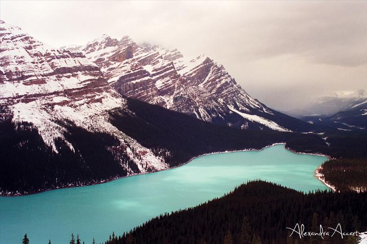 Peyto Lake - Canada