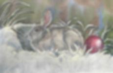 Christmas Bunny.jpg