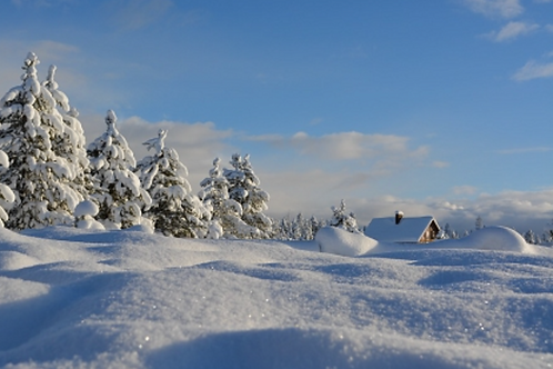 Winter Wonderland Escape