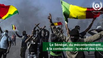 Sénégal: Du mécontentement à la contestation, le réveil des lions