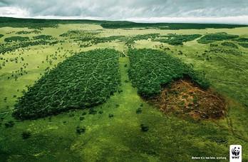 Action pour le climat, coup de chaud pour la planète