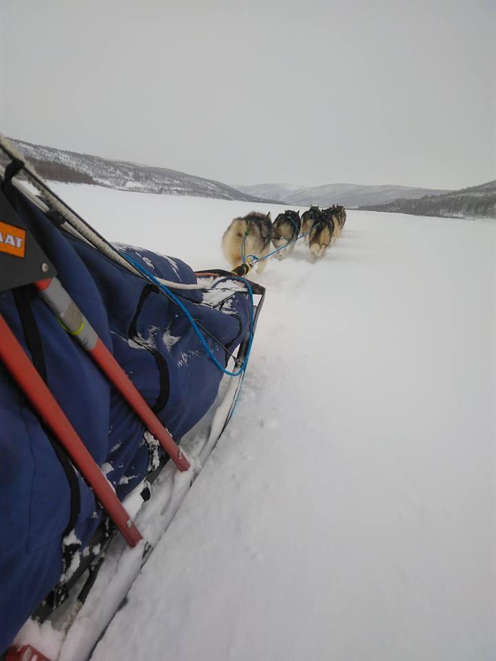 Finnmarkslöpet 2017