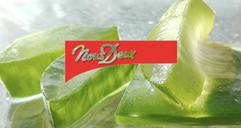 L'aloe vera, une plante miracle pour la peau ?