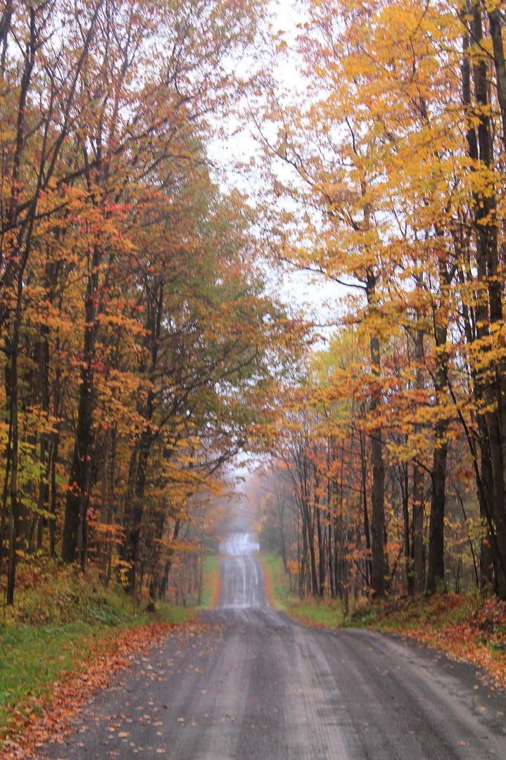 Catharine Valley Trail