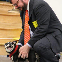 Chipper.  Social and Emotional Learning School Assembly Rescue Dog