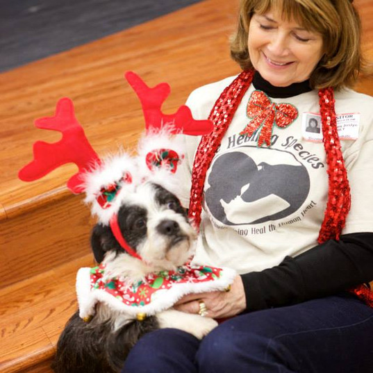 Dewey.  School Assembly Character Education Rescue Dog