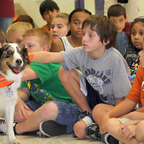 Spirit.  School Assembly Rescue Dog for Character Education