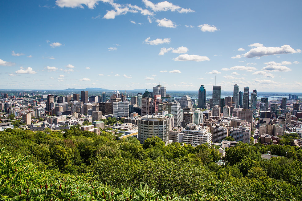 Caitlin Berger Montreal Home.jpg