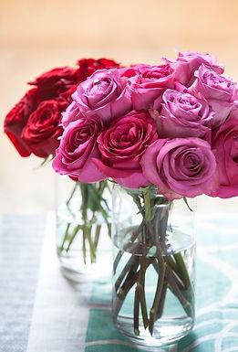 Roses in a bag