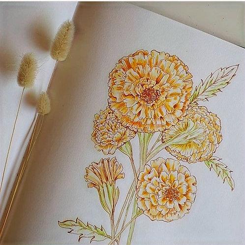 Marigold Gift card