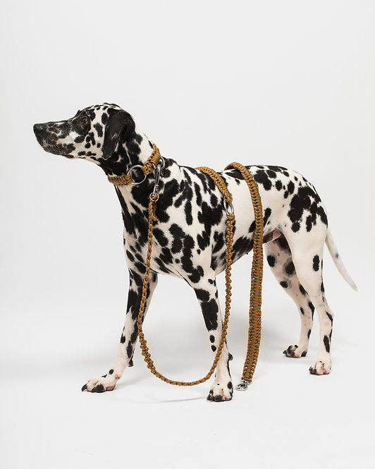 HAZEL 3 POSITIONS LEASH