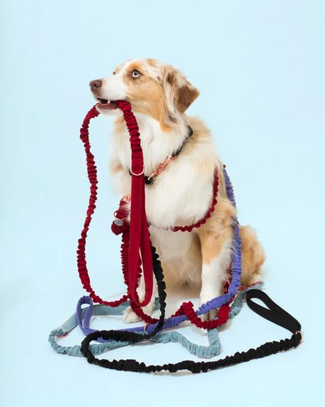 lookbook-jewel-chien-chien-20.jpg