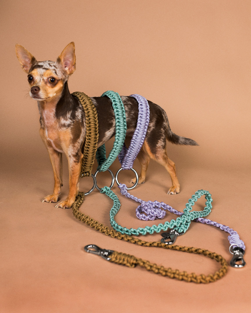 lookbook-paracord-chien-chien-62.jpg
