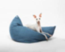 eshop-lune-chien-chien-7.jpg