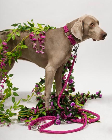 chien-chien-lookbook-bloom-65.jpg