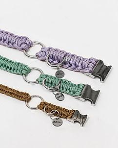 Colliers pour chien en paracorde tressée, fabriqués en France par la marque Chien-Chien.