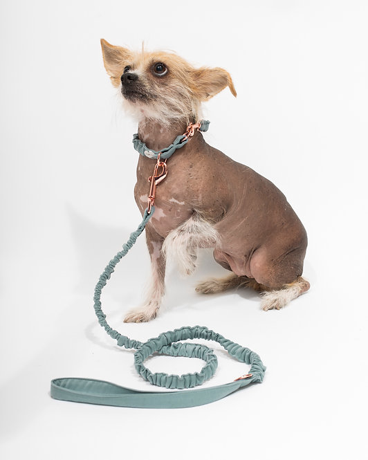 TOPAZ LEASH