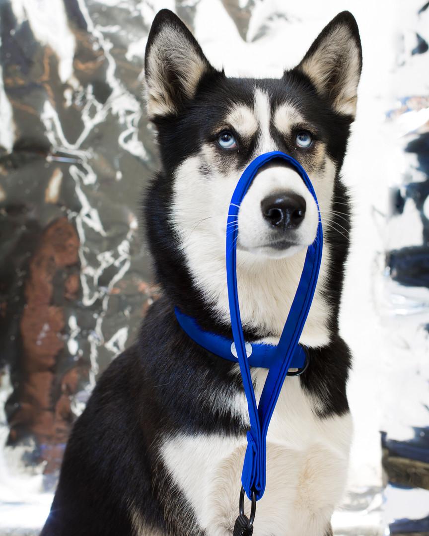 lookbook-chromatic-chien-chien-11.jpg