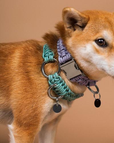 lookbook-paracord-chien-chien-3.jpg