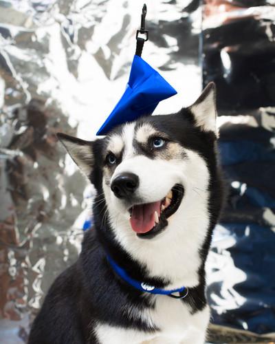 lookbook-chromatic-chien-chien-10.jpg
