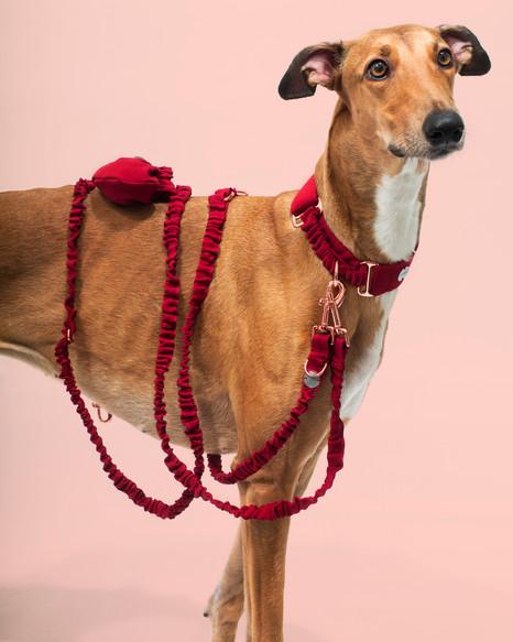 lookbook-jewel-chien-chien-33.jpg