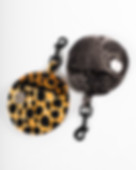 eshop-safari-chien-chien-3.jpg