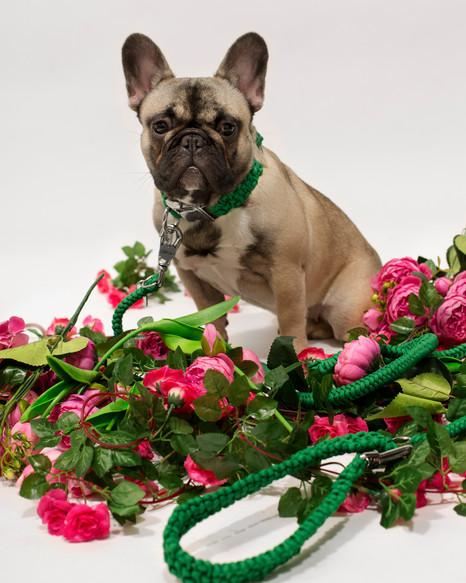 chien-chien-lookbook-bloom-57.jpg